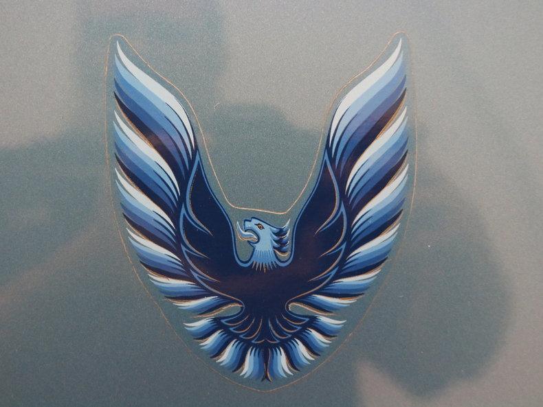 1979 Pontiac Firebird Trans Am #65